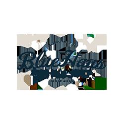 BlueHaus Mallet Shop